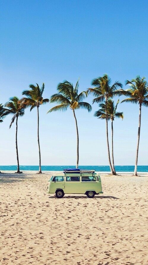 Iphone or Android VW van beach palm tree background