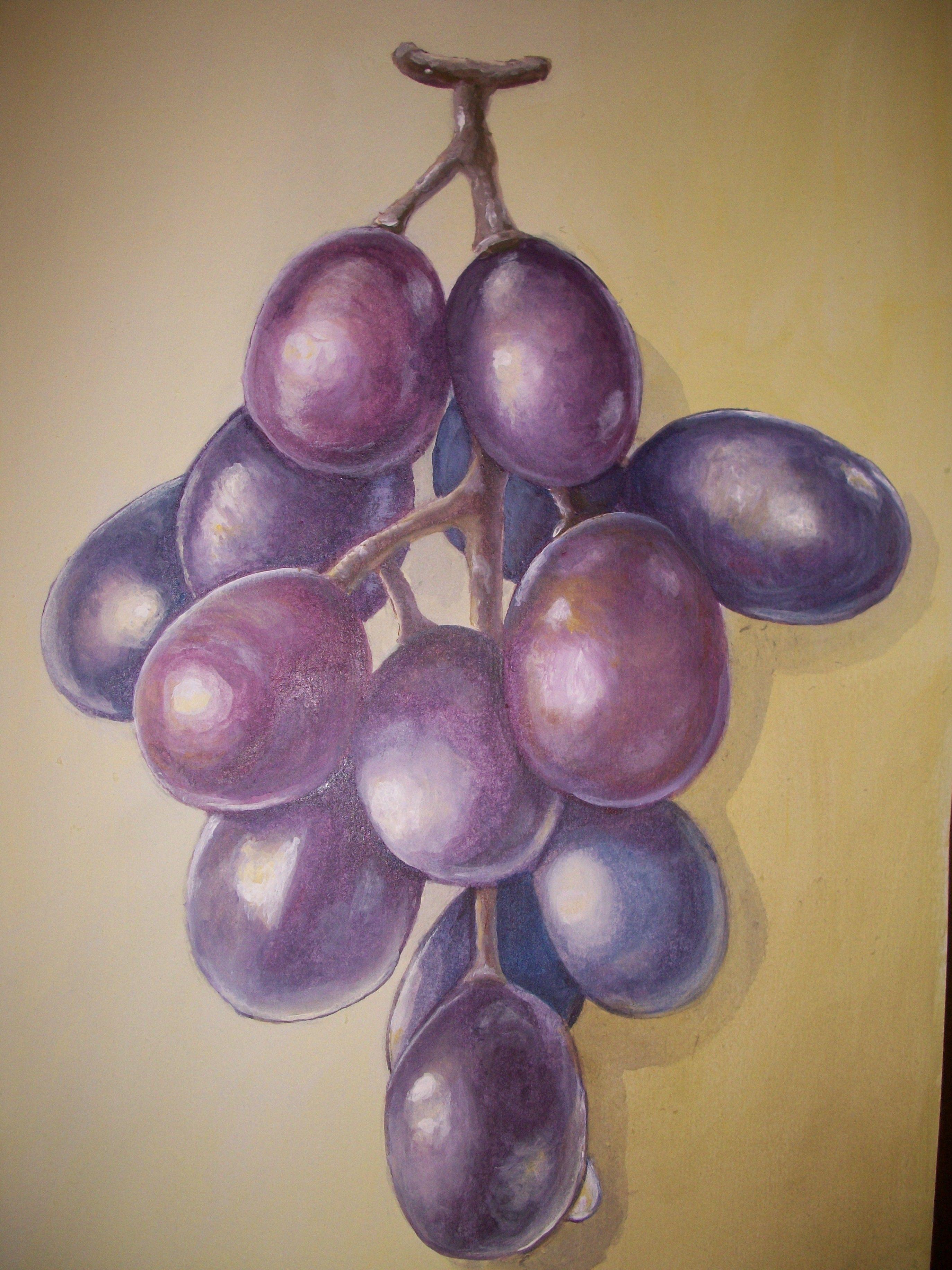 Estudio sobre complementarios, racimo de uvas   Dibujos y pinturas ...