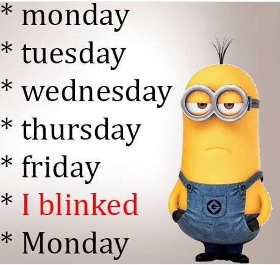 Kevin King Mobile Uploads Funny Minion Memes Happy Wednesday Quotes Minions Funny
