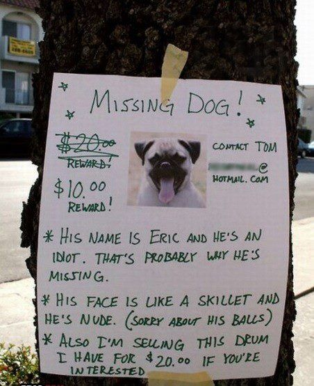 The Most Half Assed Flyer For A Missing Dog Ever Posted Lustige
