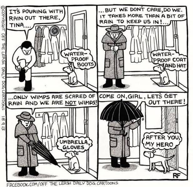 Image result for cartoons about dogs in the rain