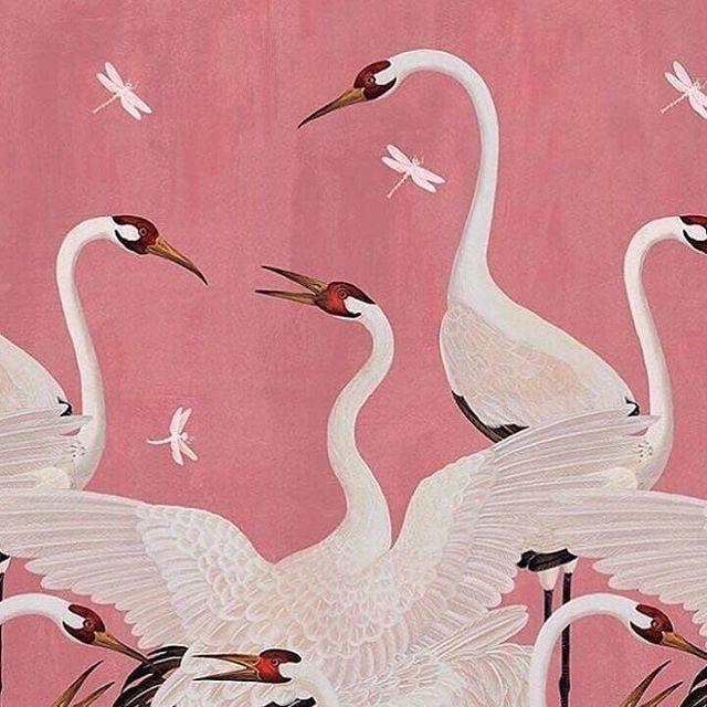 Obsessing over Gucci heron wallpaper Regram via