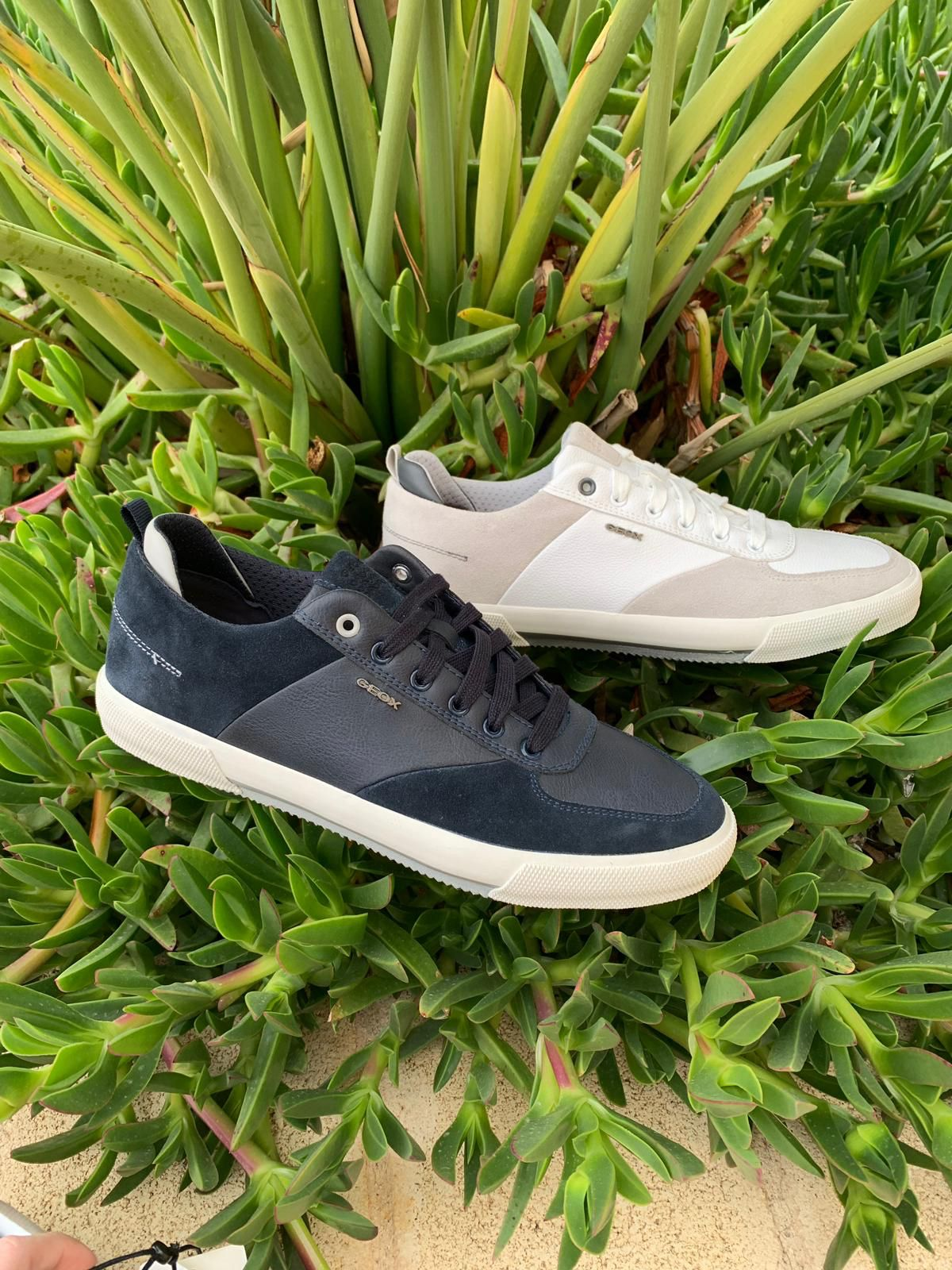 952ae8dc9ca Nueva colección primavera-verano 2019 marca Geox, tienda online o webshop  www.zapatosparatodos