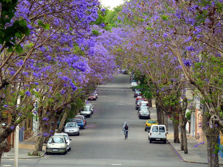 Uruguay Places to visit, Beautiful places to visit