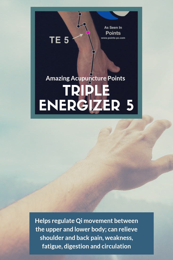 Acupuncture Point: Triple Energizer 5 | Acupuncture points ...