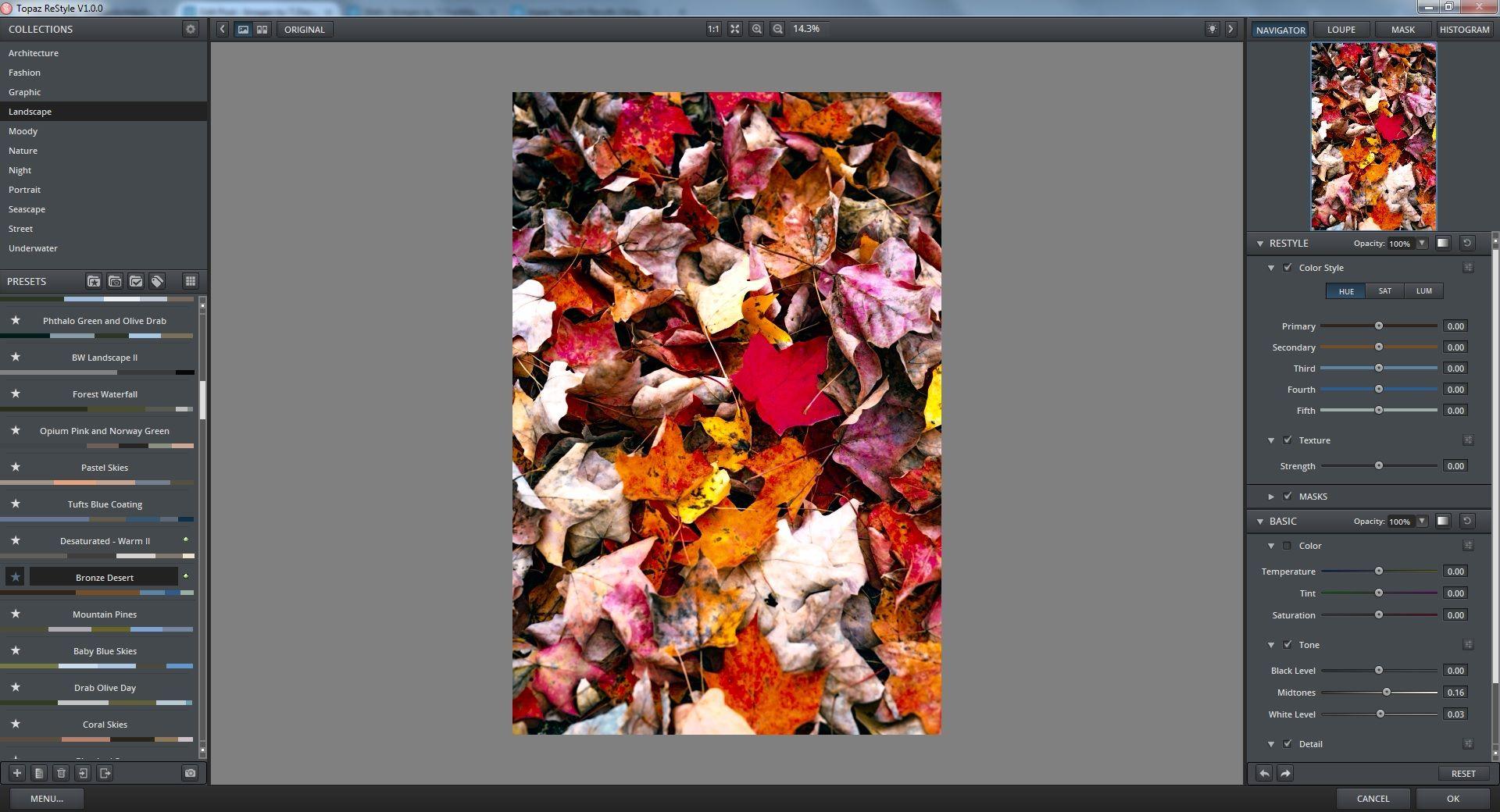 Topaz Restyle Review | Topaz, Photoshop tutorial, Something