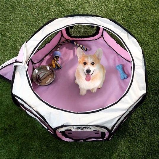 Sport Dog Training Collar Dog Training Military Style Dog