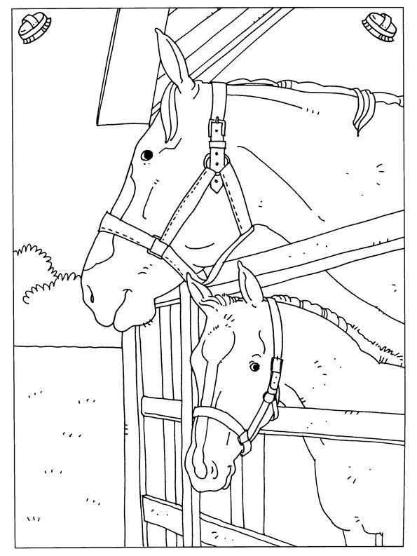 paarden kleurplaat  malvorlagen pferde ausmalbilder