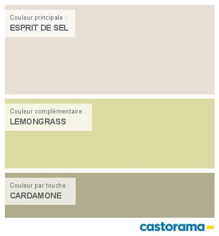 Castorama Nuancier Peinture - Mon Harmonie Peinture Esprit De Sel