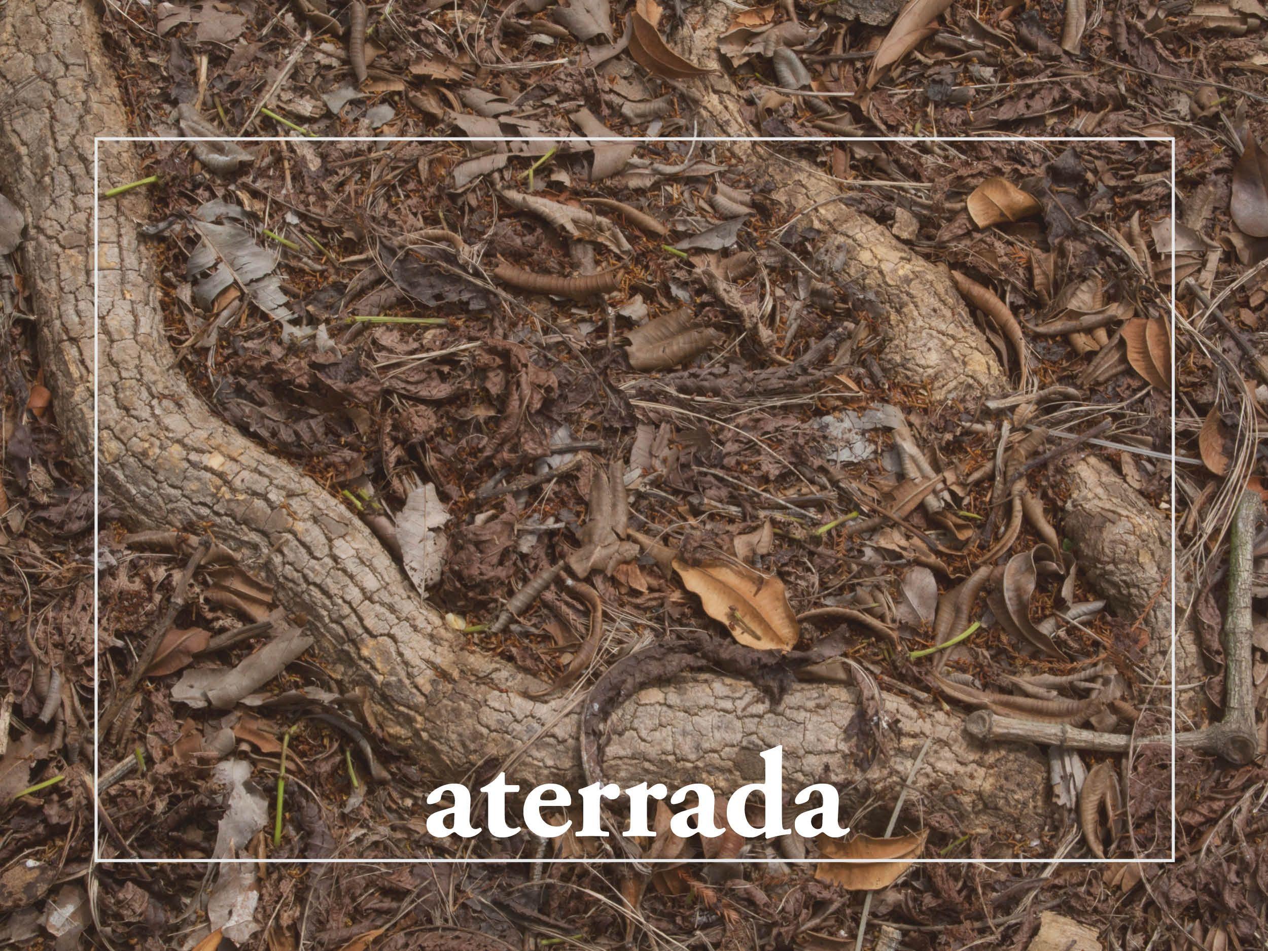Aterrada crie raízes mais profundas já se sentiu desconexo com a