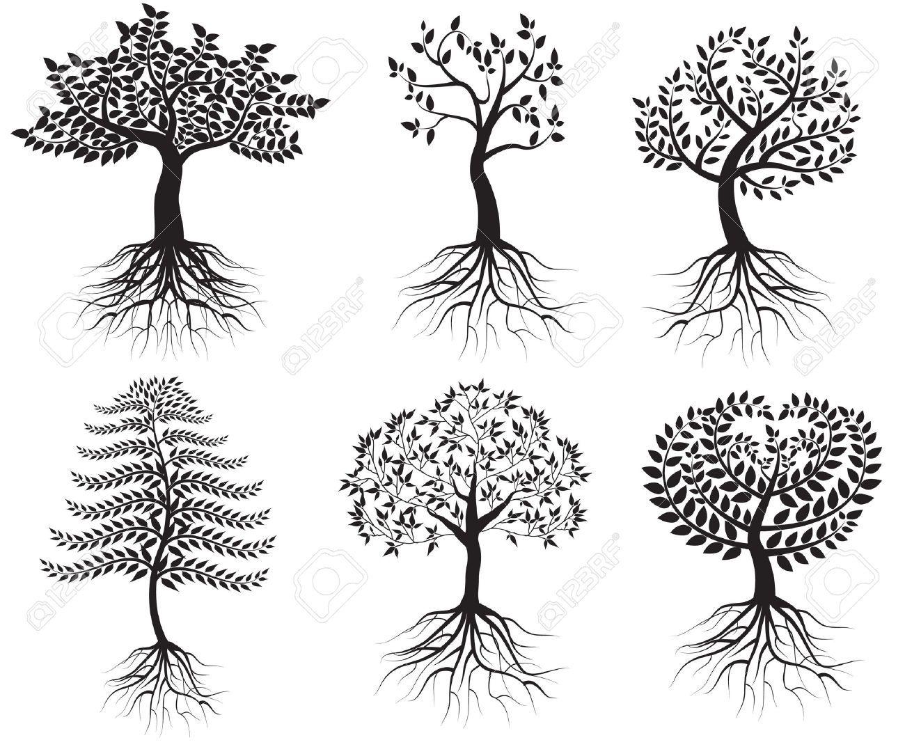 Resultado De Imagen Para Tree Vector
