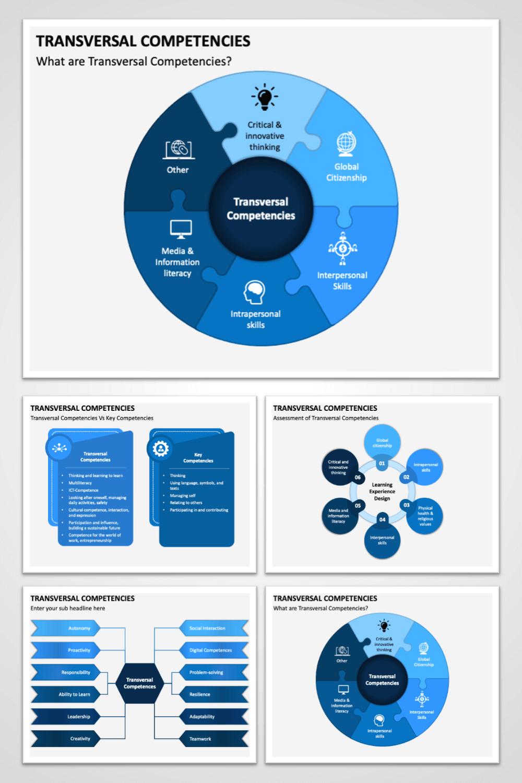 Transversal Competencies Interpersonal Skills Information Literacy Intrapersonal