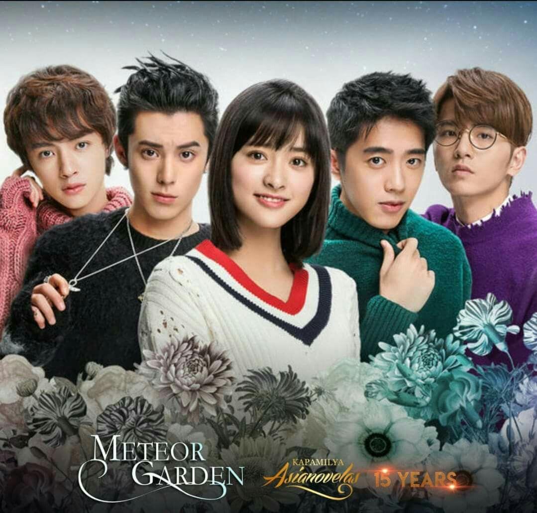 Meteor Garden, Series De Amor, Chicos
