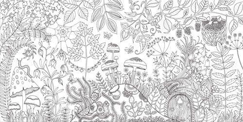 Secret Garden Ein Malbuch Fur Erwachsene Erobert Die Welt