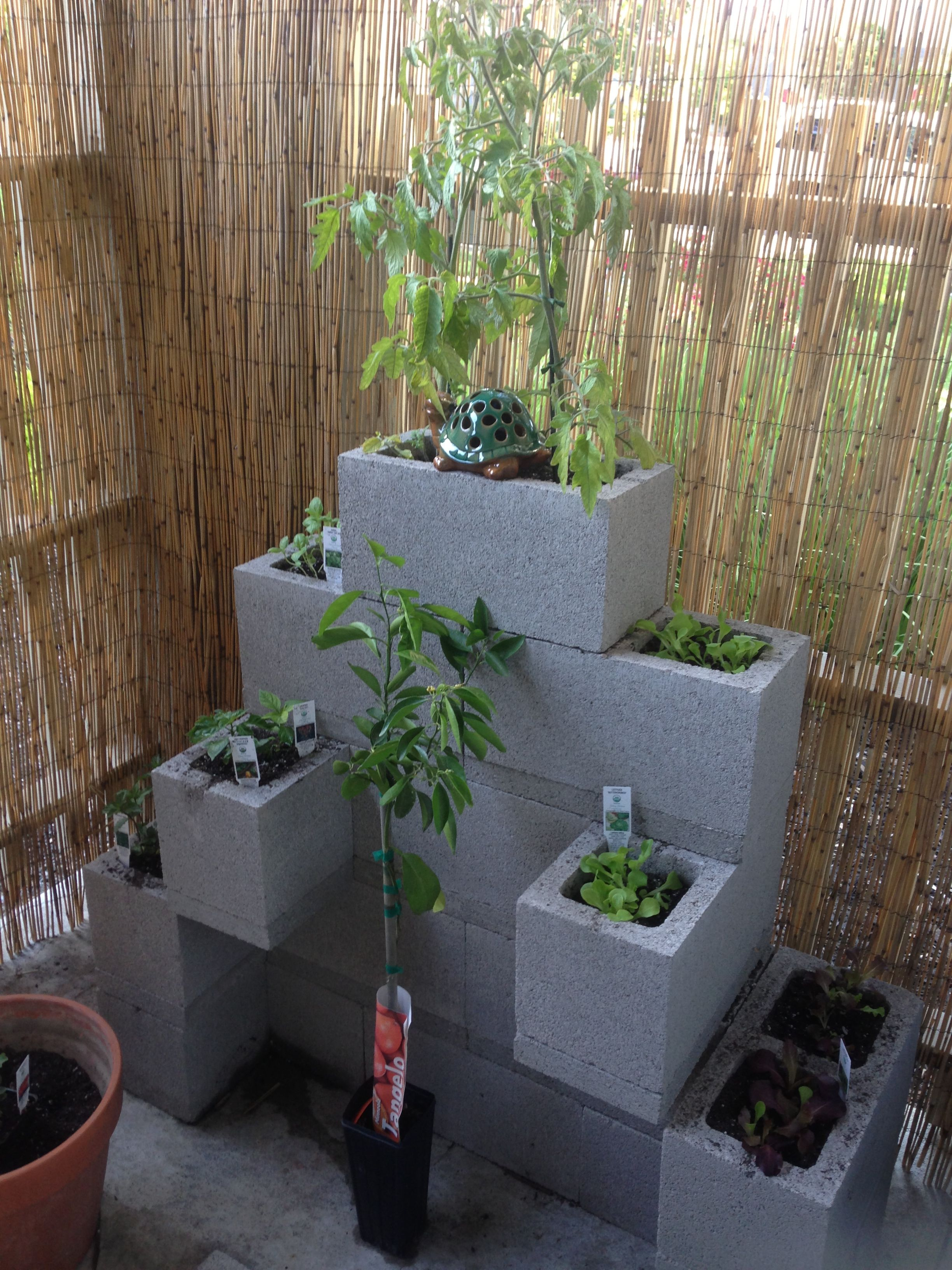 urban garden, cinder block garden, small space gardening ideas