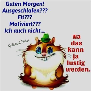 Guten Morgen Sprüche Lustig Kostenlos | Guten morgen | Haha, Happy ...