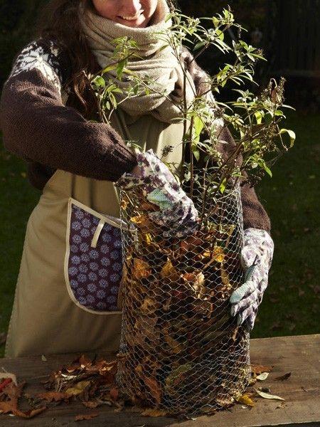 Gartentipps So Machen Sie Ihre Pflanzen Winterfest Garten