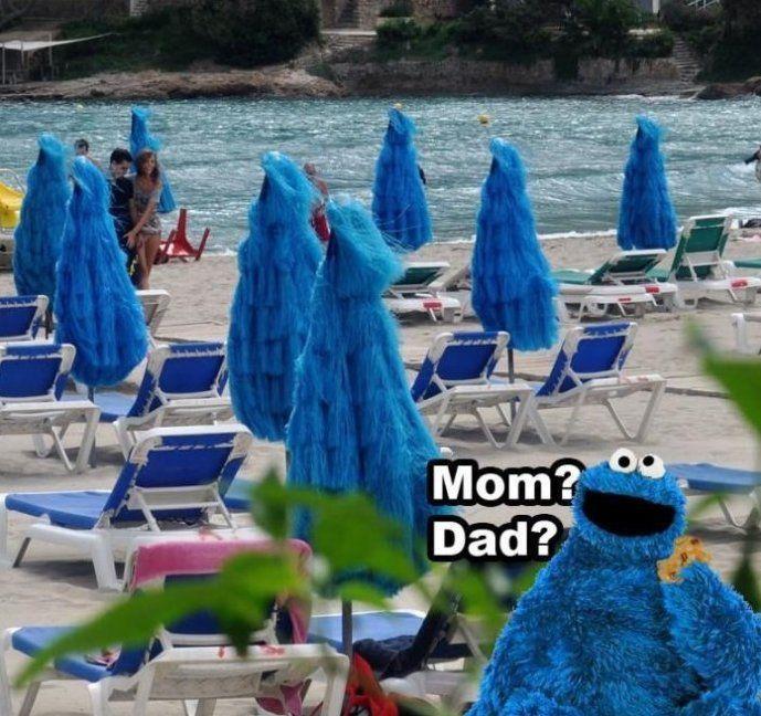 Cookie Monster Cookie Monster Meme Very Funny Images Monster Cookies