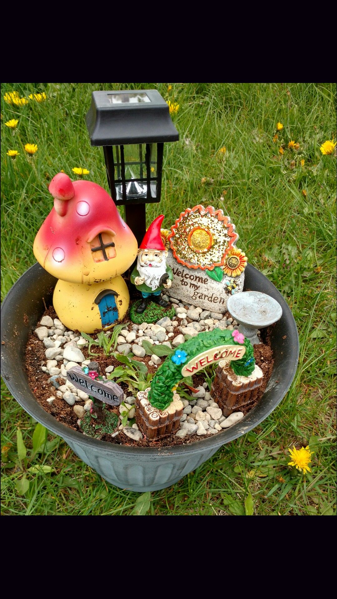 Easy dollar store mini garden great mothers day gift