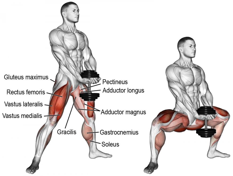 Comment effectuer l exercice SUMO squat avec haltère en musculation ... ca711229228