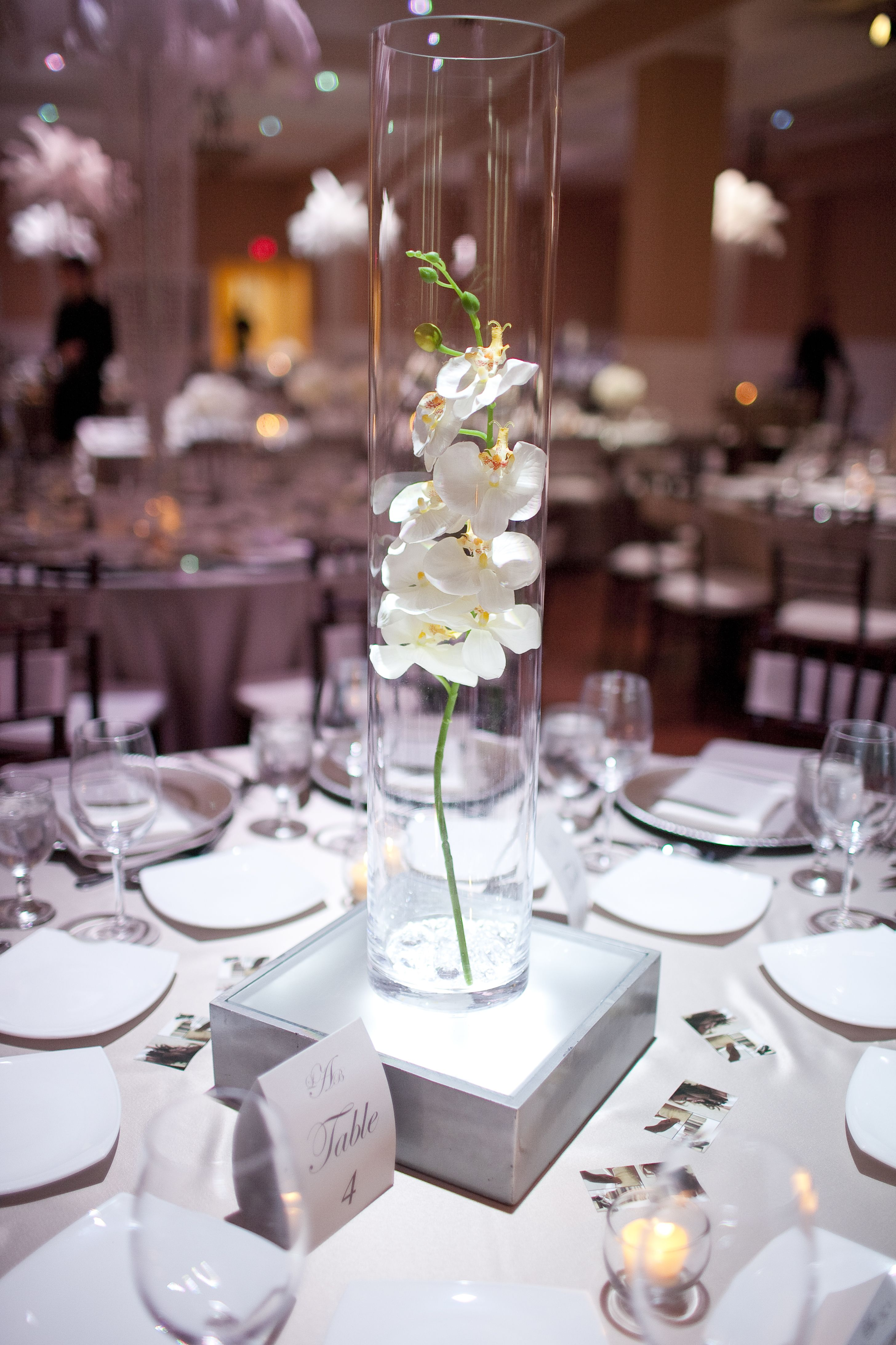 Orchid centerpiece in glass cylinder ethereal wedding