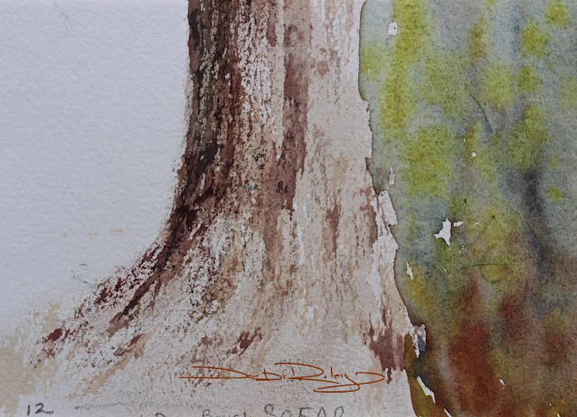 Trees In Color Tree Art Painting Watercolor Painting Techniques