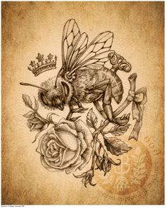 Queen Bee Laundry Logo