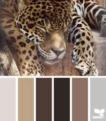 black taupe and gold home decor - Google Search