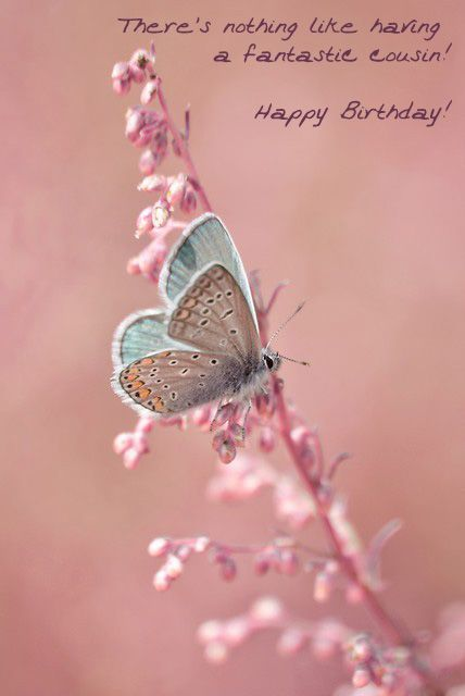 Best electronic birthday cards to cousin remembering u pinterest best electronic birthday cards to cousin bookmarktalkfo Images
