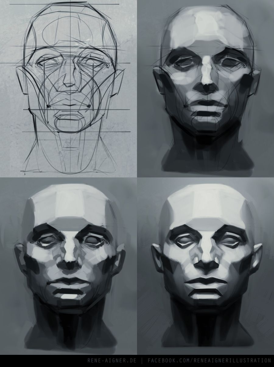 Image result for volumes of the face drawing