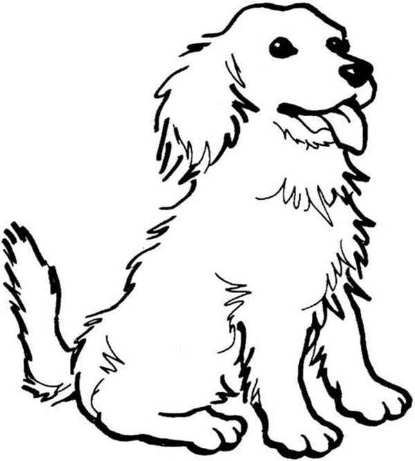 Dogs A Happy Dog Coloring Page With Images Dog Coloring