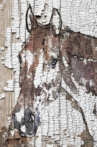 """Saatchi Art Artist Irena Orlov; Drawing, """"The Observer, 40 x 60 x 1.5 inches, Irena Orlov's One-of-a-Kind Horse Ultra Hand Embellished Textured Canvas Art"""" #art"""