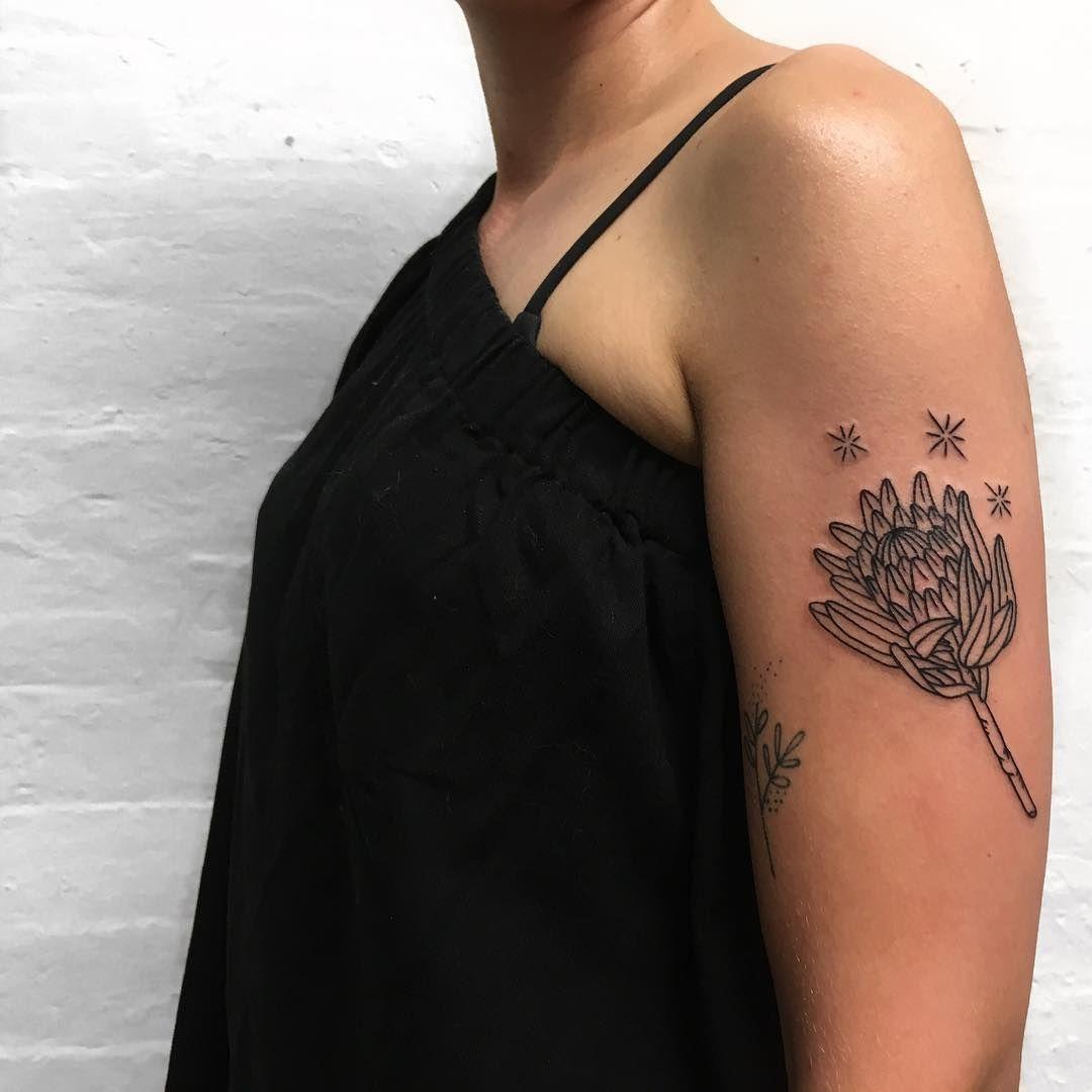 85188380e Magic Protea for a Magic Babe. Thanks for the chill hangs x #tattoo #tattoos  #protea #linework #lineworktattoo #botanical #botanicaltattoo #flora  #flower ...