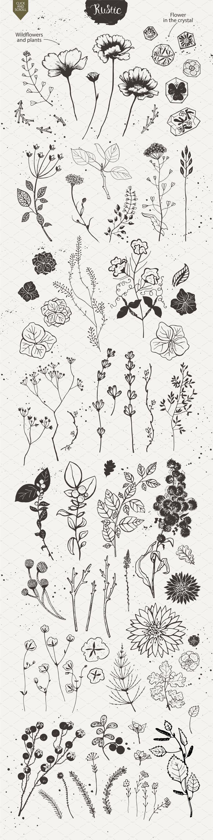 Illustrationspflanzen   – Free Motion Quilting