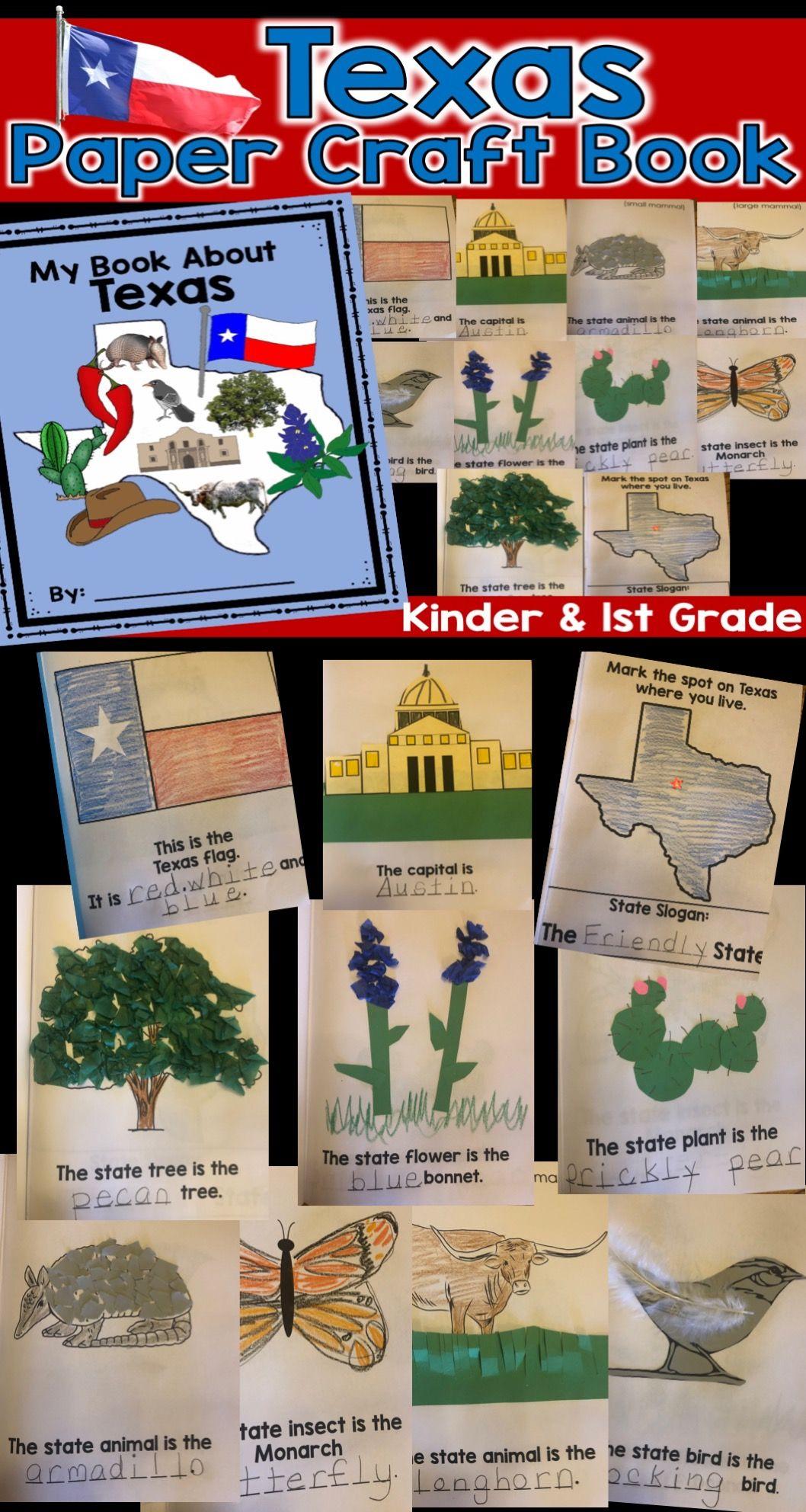 Texas Symbols Paper Book In