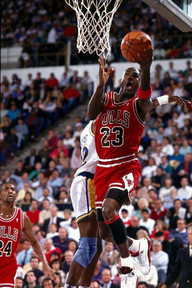 Chigago Bulls Jordan BullsJordan 23Michael JordanJordan ShoesJeffrey