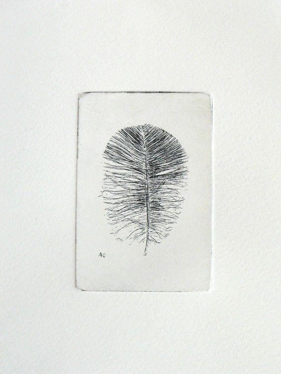 original etching of a feather f r zuhause for the home pinterest radierung malen und. Black Bedroom Furniture Sets. Home Design Ideas