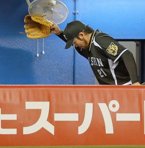 Minoru Iwata (Hanshin Tigers)