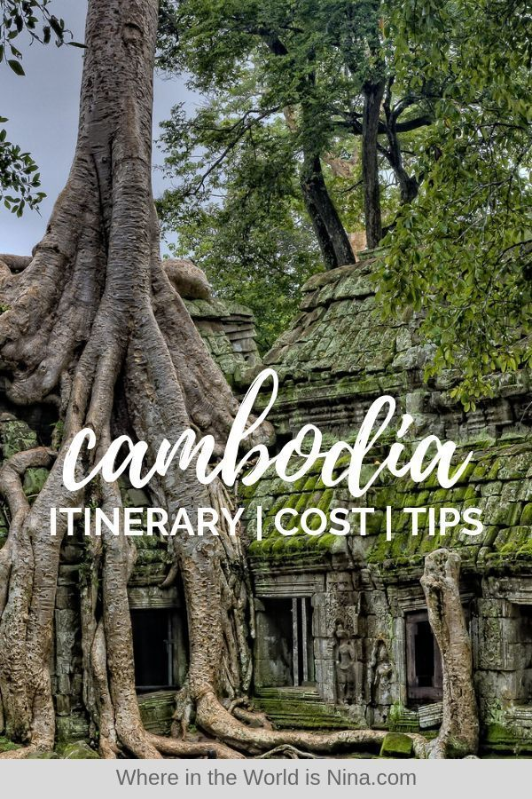 Whether you want to bask on Cambodian beaches, or relish in Cambodian history, this 2-week Cambodia itinerary will take you through the best of the best. Travel through Siem Reap, Phnom Penh, Koh Rong, Kep, Kampot, Battambang, and Kratie. Angkor Wat isn't the only place to visit while traveling in Cambodia. Get all your Cambodia tips, how much it costs to travel Cambodia and what to do in Cambodia here. Save this to your Travel Cambodia board for later! #Cambodia #TravelCambodia #CambodiaItinera