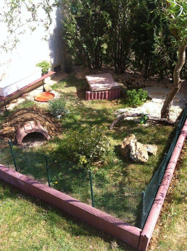 si vous avez un jardin pourquoi laisser votre tortue enferm dans son terrarium cr ez lui un. Black Bedroom Furniture Sets. Home Design Ideas