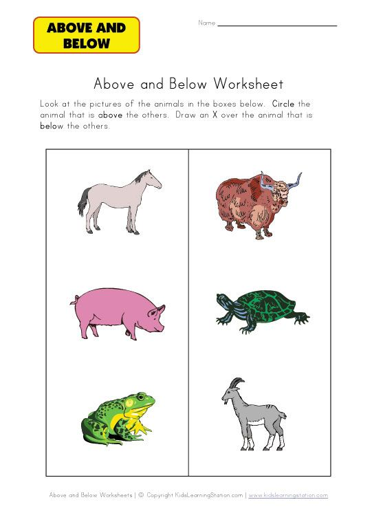 Above And Below Worksheet Animals Teaching Pinterest