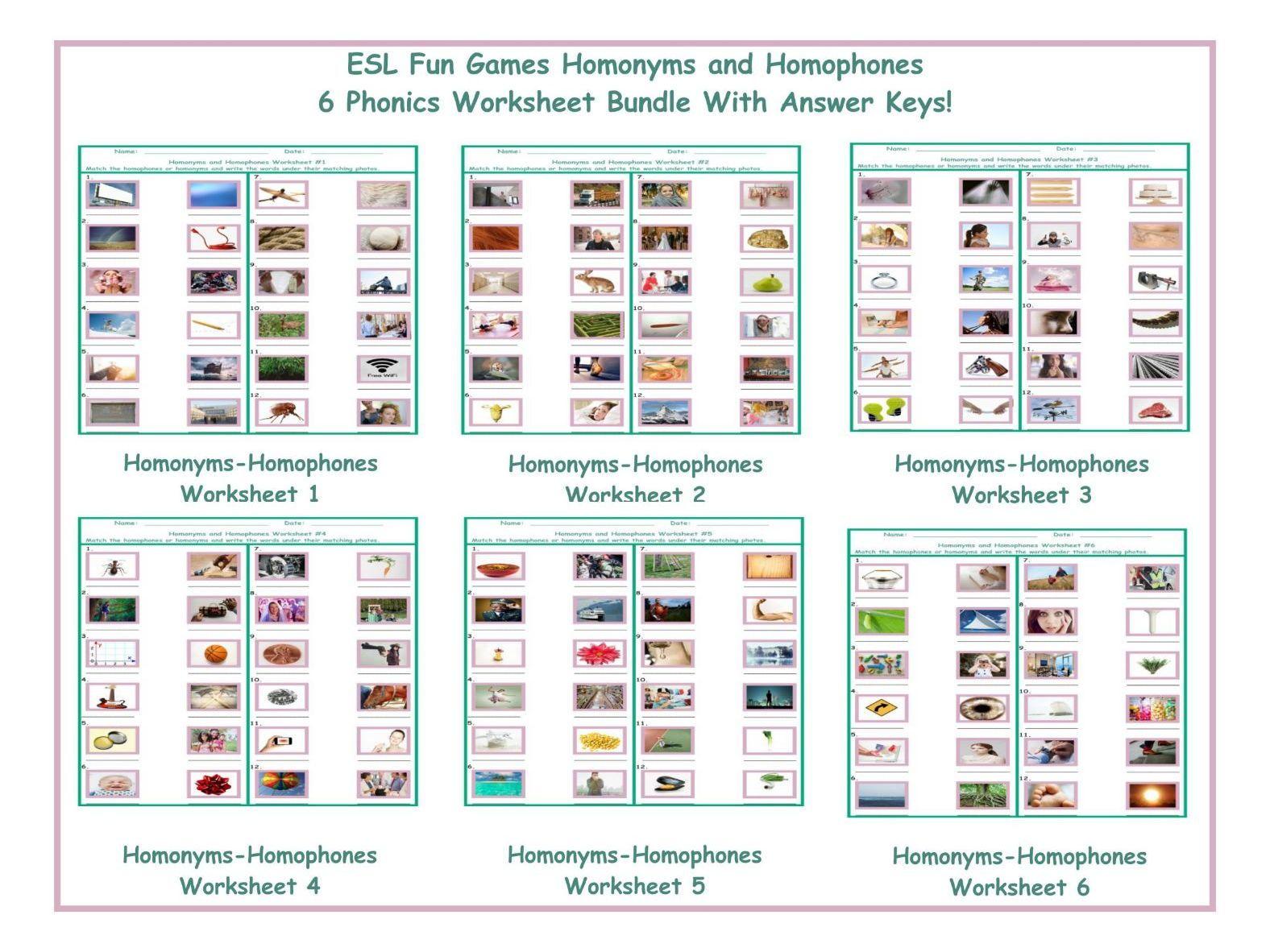 Homonyms Homophones Worksheet Bundle
