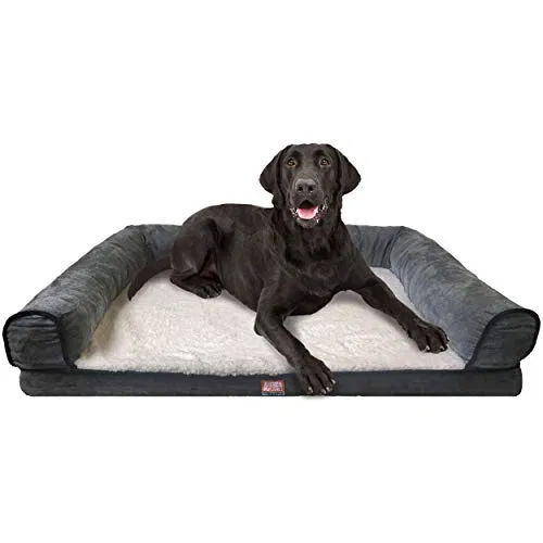 Animal Planet Orthopedic Luxury Dog Bed Premium Memory Foam Pet Dog Best Petsep Com Dog Pet Beds Luxury Dog Dog Bed Large