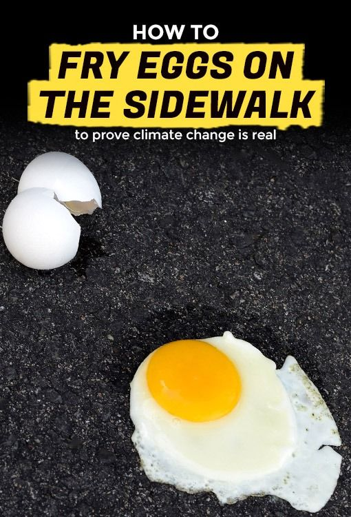 How to Fry Eggs on the Sidewalk   Extra Crispy