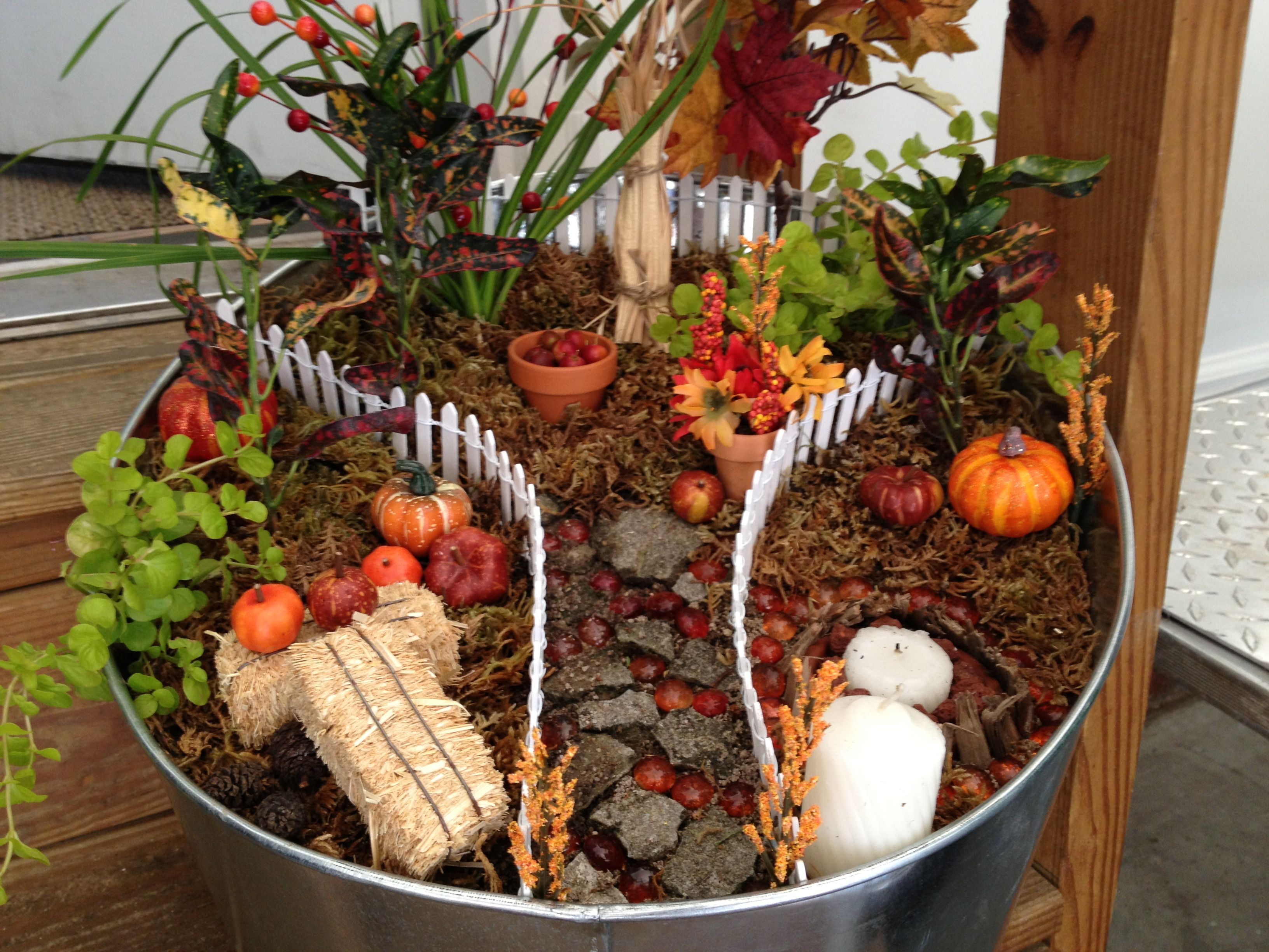 Smart Fall Fairy Garden I Made Amanda Bday Fall Fairy Garden Ideas Amanda Bday Fall Fairy Garden I Made