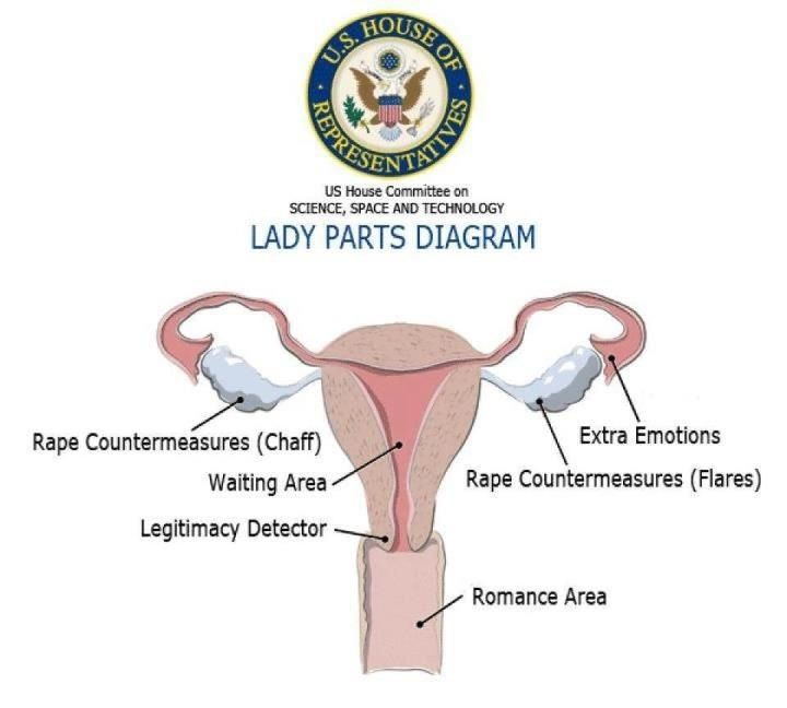 Top-secret Republican map of the female reproductive system