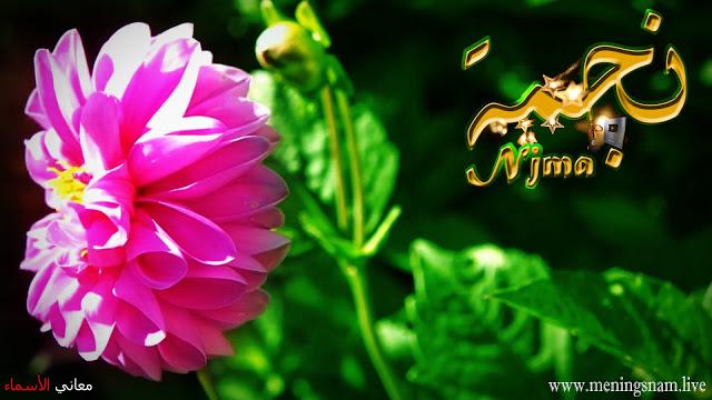 معنى اسم نجمة وصفات حاملة هذا الإسم Njma Enamel Pins Plants
