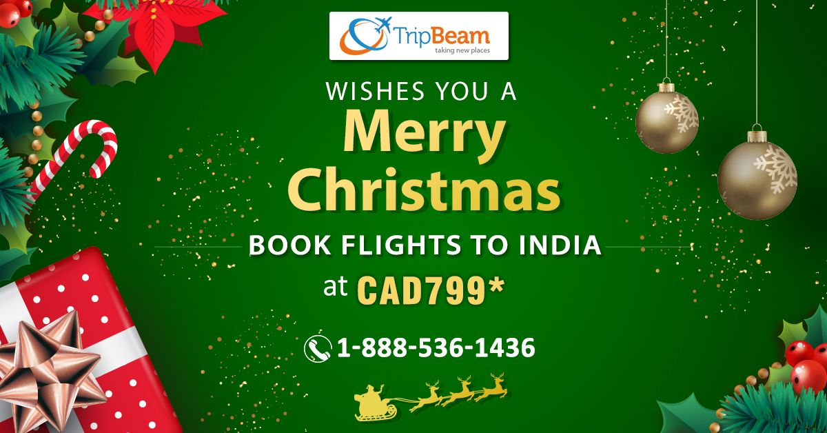 #Tripbeam,  Wishing you all a very happy #Christmas! Enjoy great discounts on flights tickets from #Canada to #India. Hurry! Contact us today!  For more information: Contact us at: 1-888-536-1436 (Toll-Free), info@tripbeam.ca.  #MerryChristmas #ChristmasCelebration #ChristmasDay #Christmasflightdeals #ChristmasTravelDeals #christmasdeals #canadatoindiaflights #CanadaToIndia #FlightDeals #indian #Destinations #vacations #tourpackages #ExploreIndia