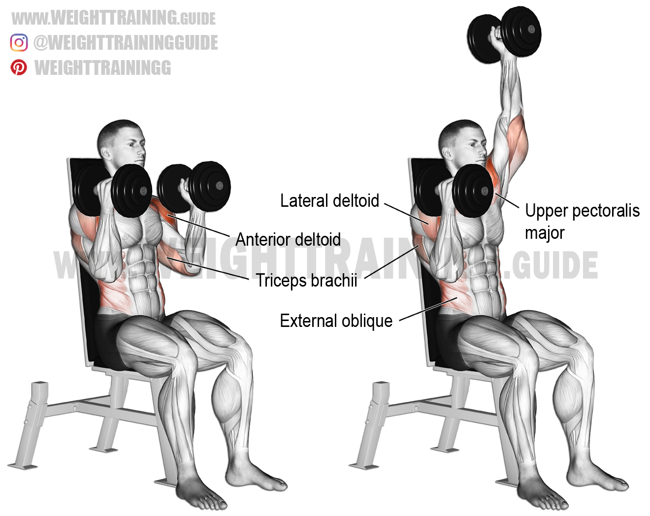 Seated elbows-in alternating dumbbell overhead press