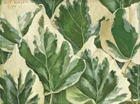 Artwork by Eliot Hodgkin, Variegated Ivy Leaves, Made of tempera on gesso prepared board
